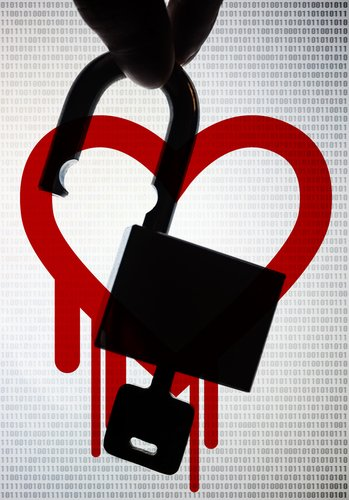 heartbleed-graphic